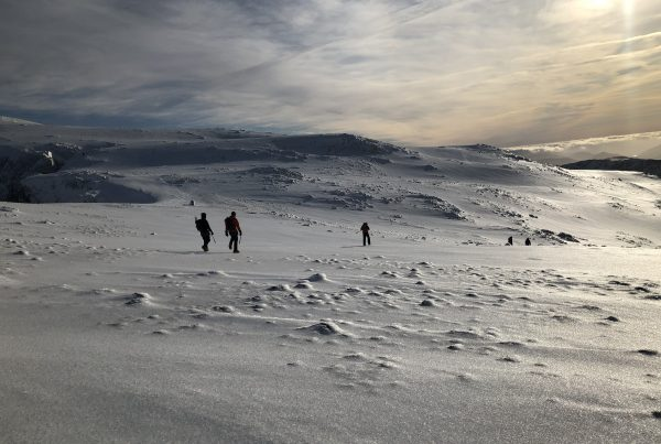A group of mountaineers descending the summit plateau of Ben Nevis in winter, with the snow sparkling all around them