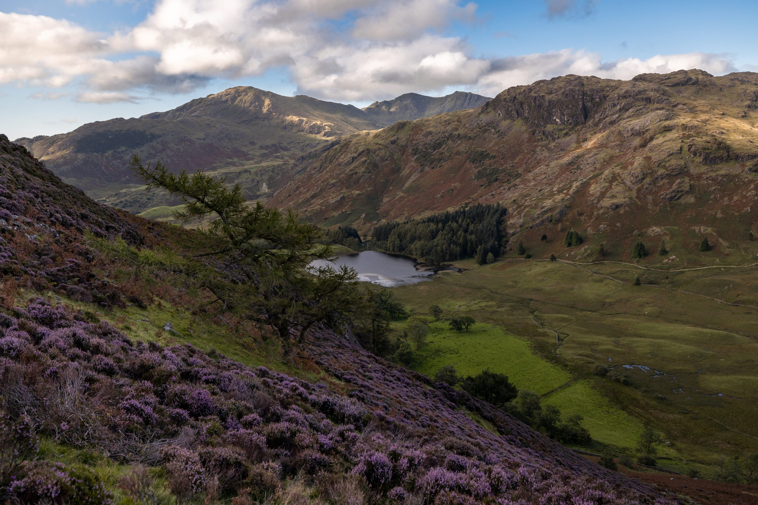 A view of Blea Tarn and Wetherlam at dawn seen from Side Pike in the Langdale Valley