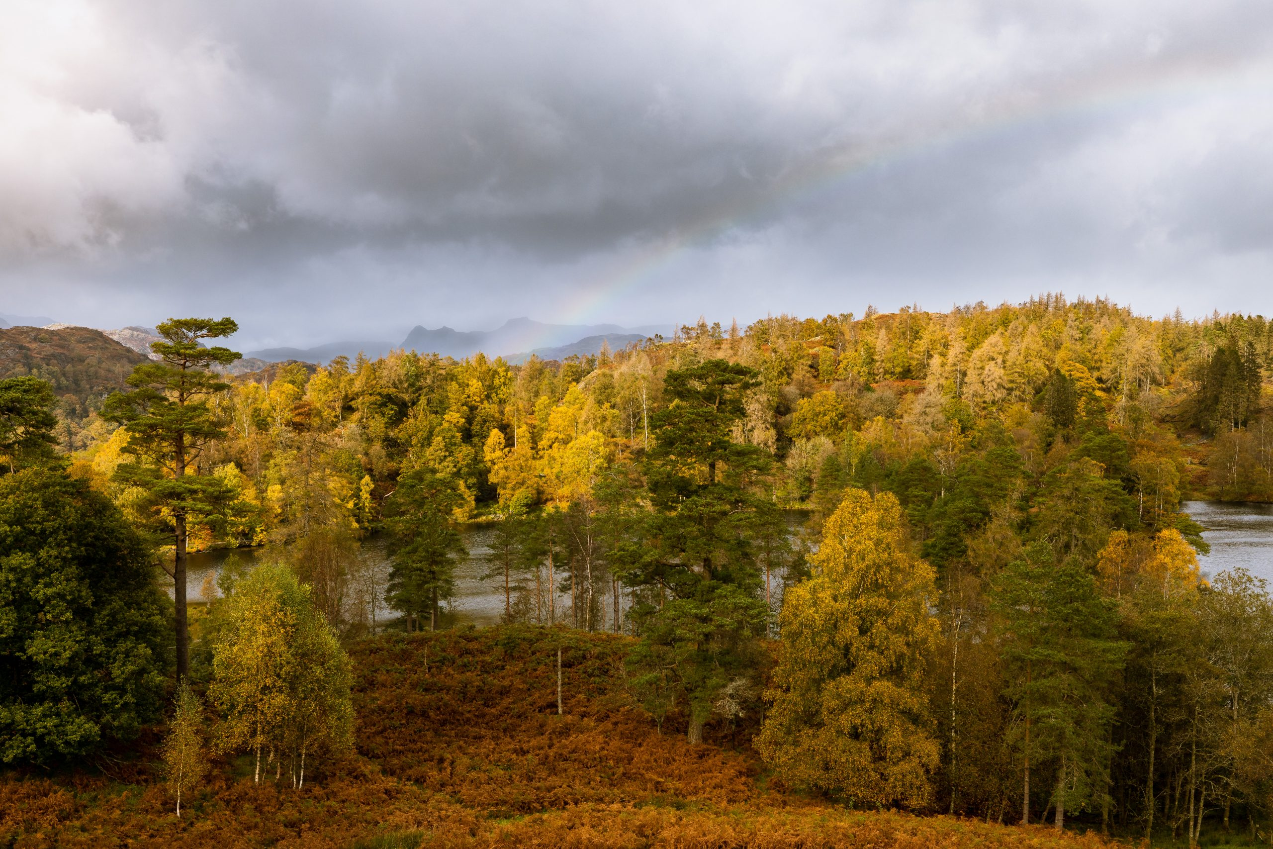 The Langdale Pikes in the autumn, highlighted by a rainbow, seen from Tarn Hows in the Lake District