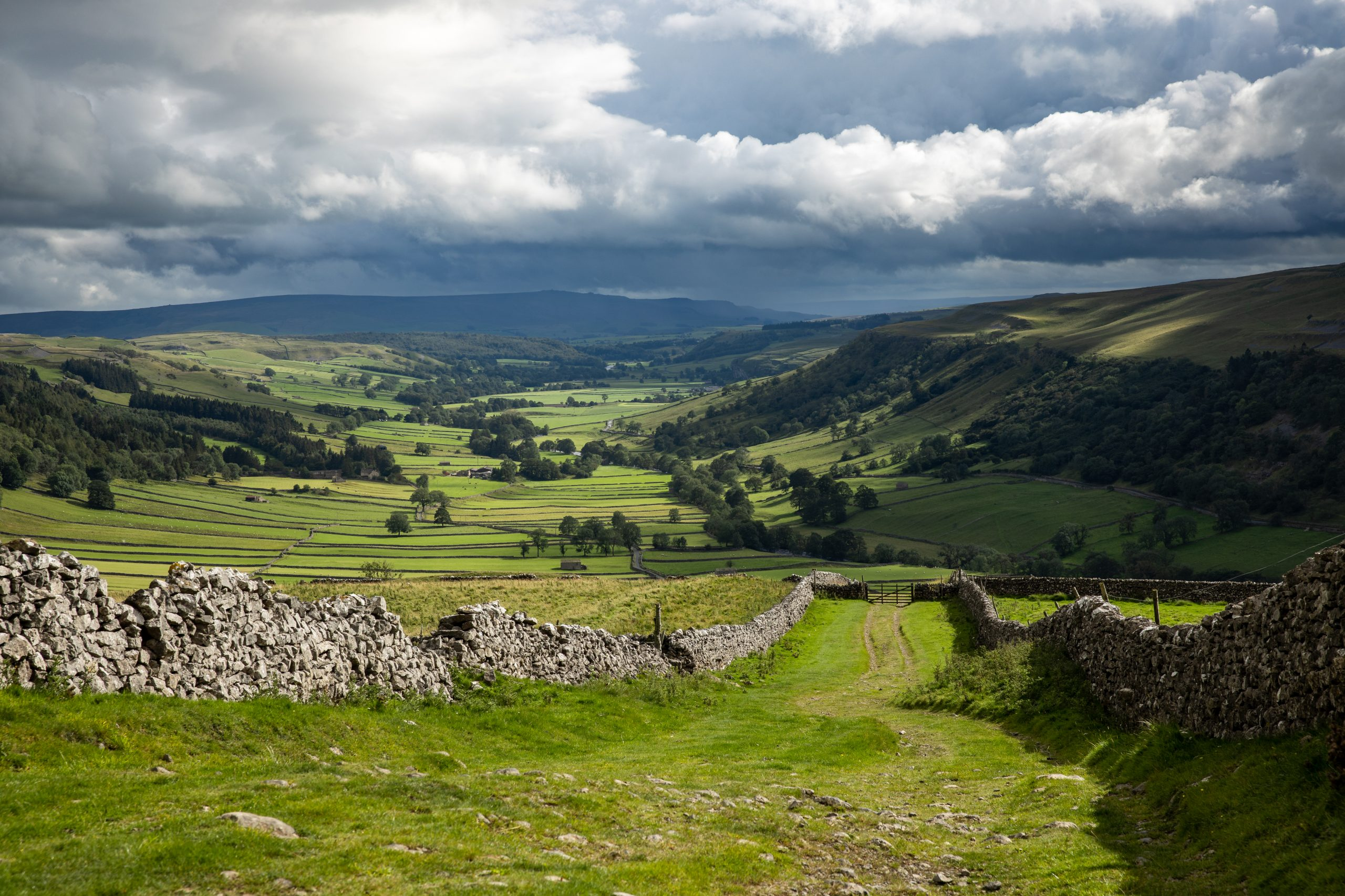 The beautiful green fields of Wharfedale valley around Kettlewell, seen during a guided walk in the Yorkshire Dales